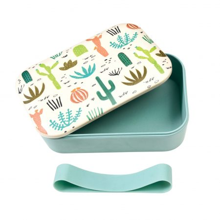 Bamboo eco friendly lunchbox