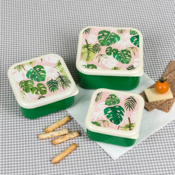 tropical-palm-snack-boxes-28001-lifestyle