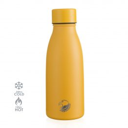 Insulated isothermal water bottle